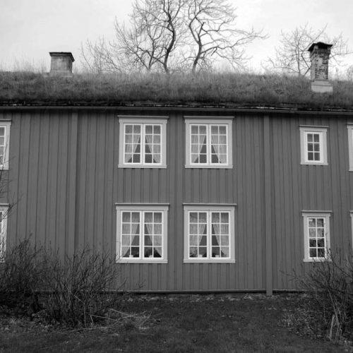 Løp Gård Bodø Norge